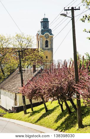 Blooming sakura trees and old church. Seasonal scene. Spring time. Vertical composition. Beautiful place.