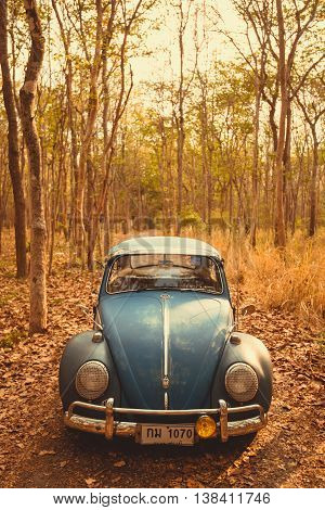 Vintage Car Volkswagen Retro Blue Color In Forest Leaves Brown