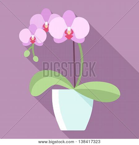 Vector illustration of orchid flower in flowerpot with long shadow. Modern pastel colors. Flat style.