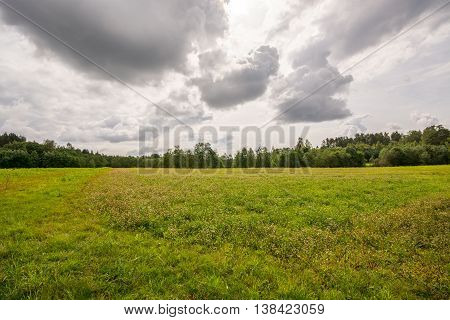 Green field, sunny day with masive clouds.