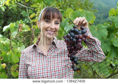 Smiling Farmer Holding Grapes