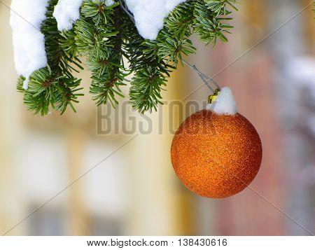Isolated christmas decoration - orange globe on snowy pine tree