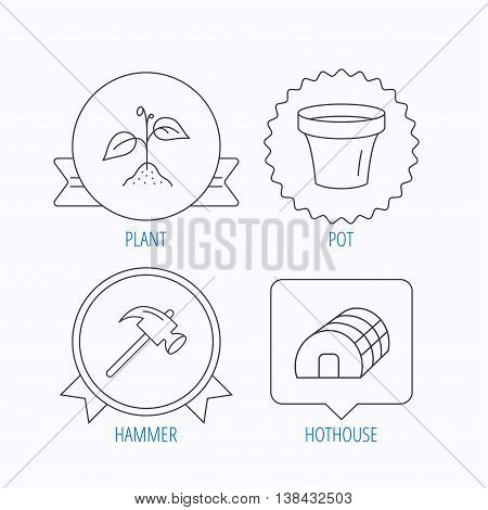 Sprout plant, hammer and pot icons. Hothouse linear sign. Award medal, star label and speech bubble designs. Vector