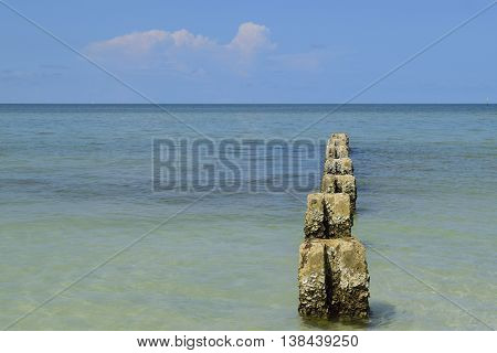 Cement pillars covered in barnacles in the Gulf of Mexico at Honeymoon Island State park in Dunedin, Florida.