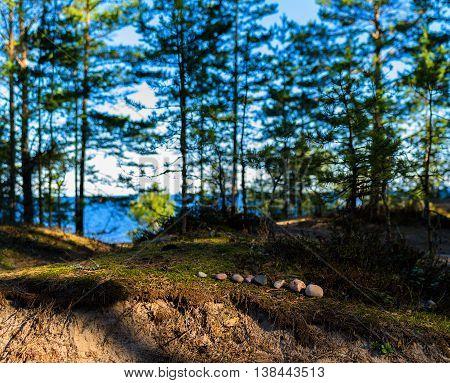 Horizontal Vivid Toy Nature Landscape Zen Stones Background
