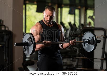 Muscled Male Model Exercising Biceps With Barbell