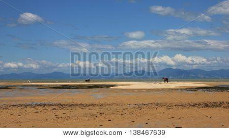 Low tide at Marahau beach. Idyllic landscape near Nelson New Zealand. poster