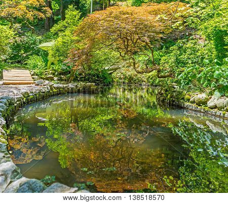 The beautiful Japanese garden with tiny pond and tilted tree in the East Asian floristic section of Batumi Botanical Garden Georgia.