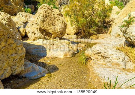 The narrow spring in Ein Gedi oasis located in Judean desert Israel.