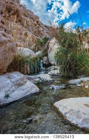 Picturesque rocky gorge with  noisy waterfall and rapid creek. Ein-Gedi - the reserve of Israel