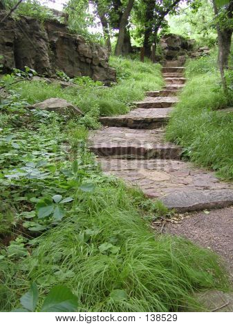 Steps Leading Up A Scenic Path
