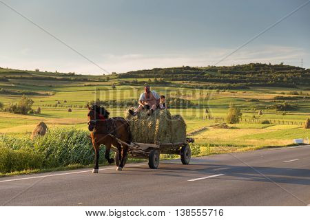 SIBIU, ROMANIA - JULY 13, 2016: Horse cart carrying hay harvest, in Sibiu County, Transylvania. Peasants transporting their hay harvest In July, it is hay harvest time in the romanian villages.