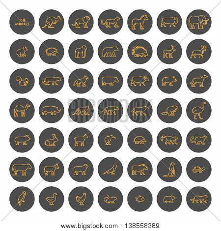 Vector gold linear set of silhouettes of domestic farm forest and wild animals. Line icon warthog chicken mouse hedgehog cat dog and others. Open path.