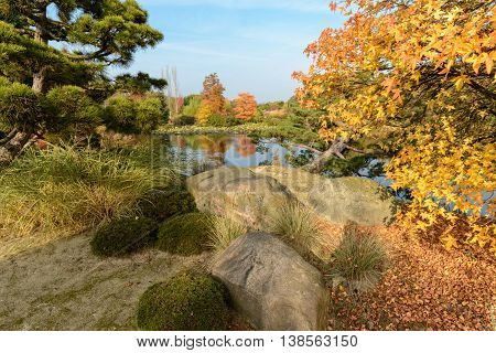 Lake with autum foliage and blue sky