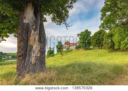 Rural landscape with a castle with green trees, lake and blue sky with clouds
