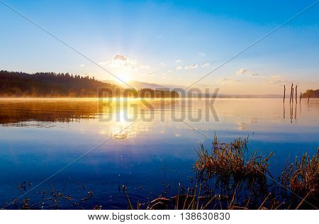 detail of grass halm at a lake in magical morning time with dawning sun