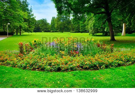 summer park with beautiful flowerbeds and meadow