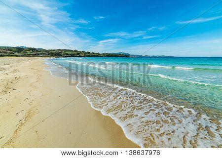 blue sky over Rena Bianca beach in Sardinia Italy