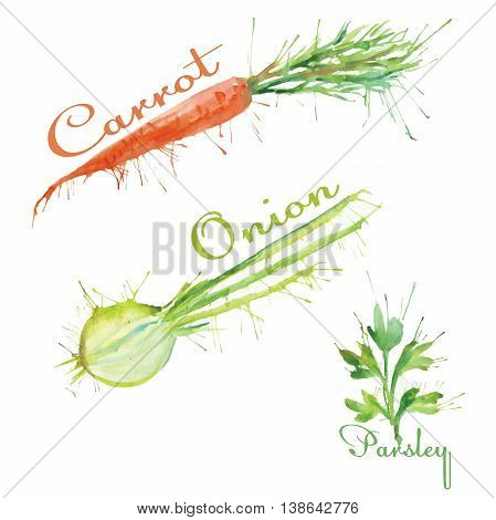 watercolor set of vegetables carrot, onion, parsley
