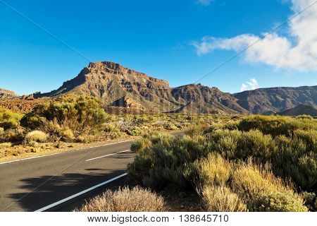 Landscape with road in Teide National Park, Tenerife, Canary Island, Spain