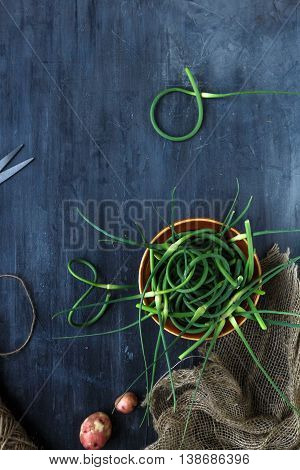 Fresh Garlic Scapes On A Dark Background, Place For Text