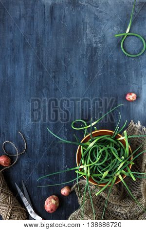 Fresh garlic sprouts on a dark background, top view, place for text