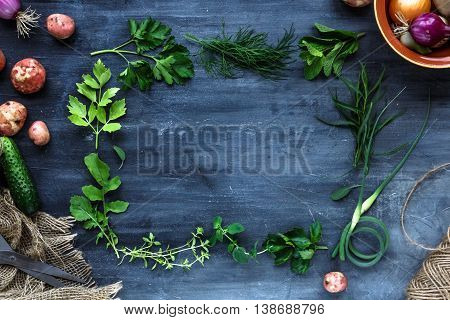 Fresh Herbs Frame On Dark Background: Parsley, Dill, Celery, Thyme, Marjoram, Place For Text