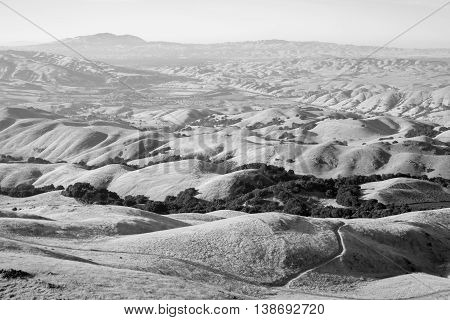 Rolling Hills in the East Bay Regional Parks, California