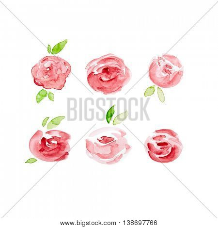 Watercolor Roses (hand painted)