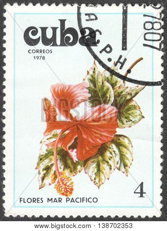 MOSCOW RUSSIA - CIRCA JANUARY 2016: a post stamp printed in CUBA shows a flower the series