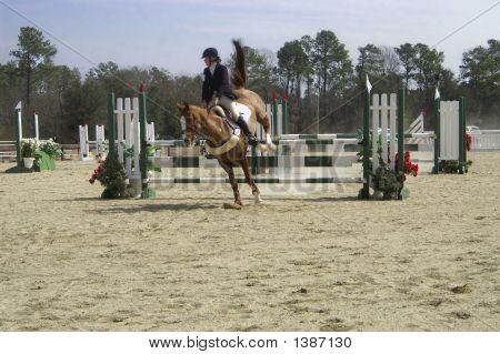 Horse Trials 7