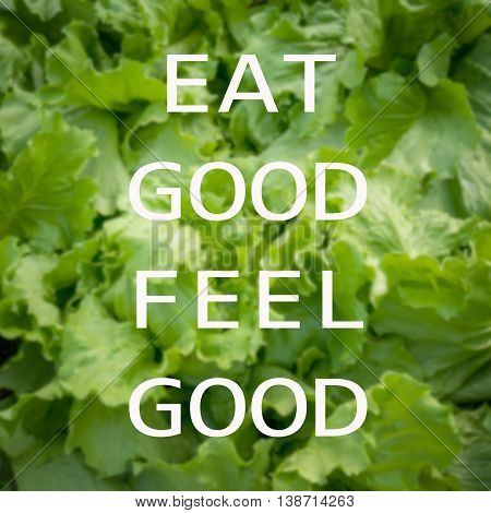 Good quote on green vegetable background , Eat good feel good