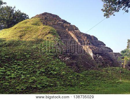 Pyramid in the Mayan city of Tikal Guatemala