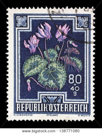 ZAGREB, CROATIA - JULY 03: stamp printed by Austria, shows Wild Violets (Viola odorata), circa 1948, on July 03, 2014, Zagreb, Croatia
