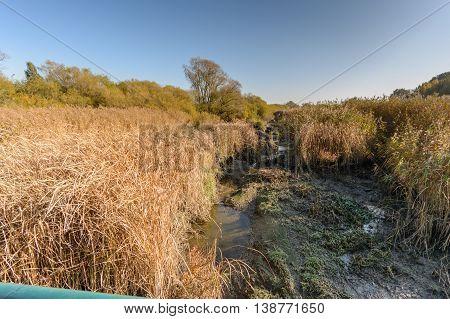 Low tide at river elbe near by hamburg