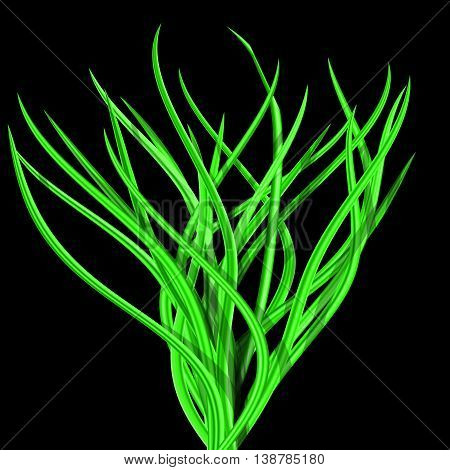 Illustration of abstract bright green tussock on black background