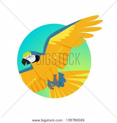 Ara parrot vector. Birds of Amazonian forests in flat design illustration. Fauna of South America. Flying colorful Ara parrot for icons, posters, childrens books illustrating. Isolated on white.
