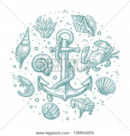 Set sea shell coral crab shrimp and anchor. Vector engraving vintage illustrations. Isolated on white background. For tattoo web and label