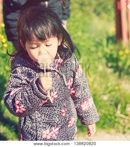 mother and 2 years kid walking with sunset play with flower blow so happy and funny family