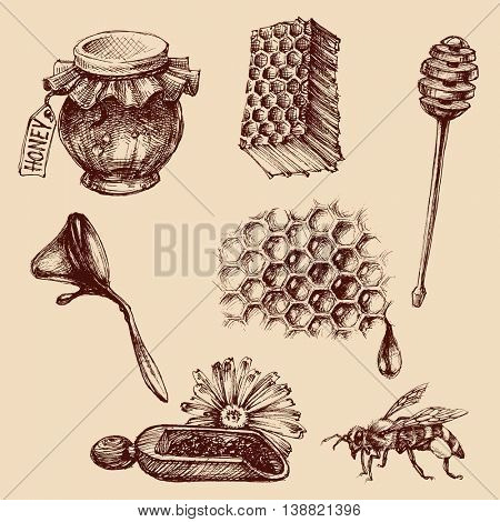 Honey and apiculture set. Bee vector icons collection
