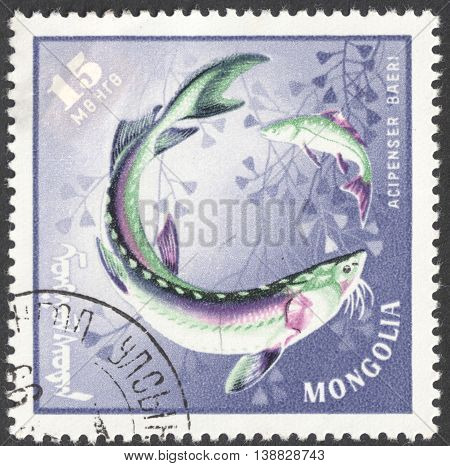 MOSCOW RUSSIA - JANUARY 2016: a post stamp printed in MONGOLIA shows a fish with the inscription