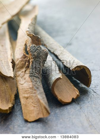 Cinnamon Bark poster