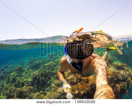 Snorkel Swims In Shallow Water, Red Sea, Egypt