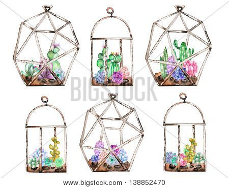 Collection of florariums with watercolor succulents and cuctuses inside, hand drawn isolated on a white background poster