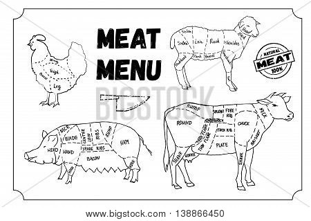 Meat menu. Set of meat symbols, beef, pork, chicken, lamb. Hand drawn vector stock illustration. Black and white whiteboard drawing.