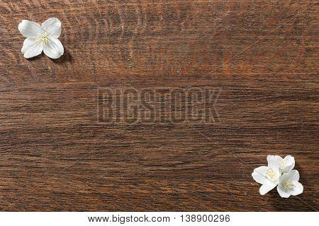 Fresh jasmine flowers on wooden background