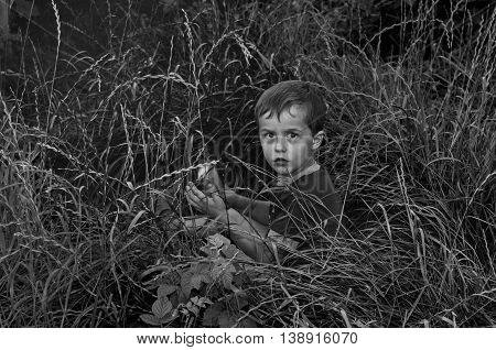 I suddenly took a picture of his son in the tall grass.