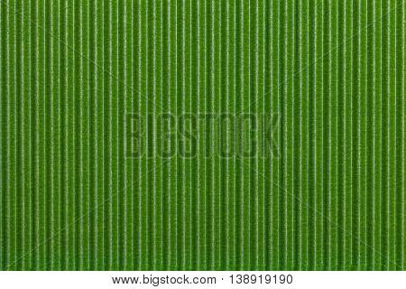 Texture corrugated green paper. Striped corrugated background closeup