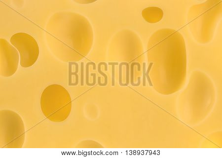 The texture of the cheese. Close-up with holes