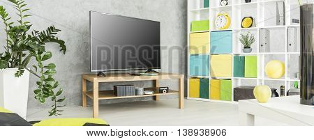 Living Room With Television Idea